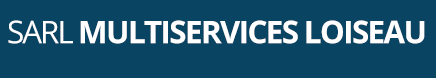Multi Services Logo